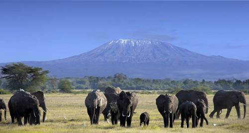 Il Kilimanjaro, Tanzania