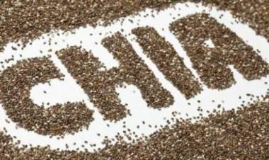 Tutte le proprietà benefiche dei semi di chia