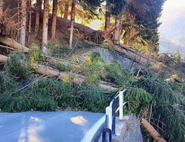 Traona (SO) Vento fa volare il tetto, muore donna di 77 anni